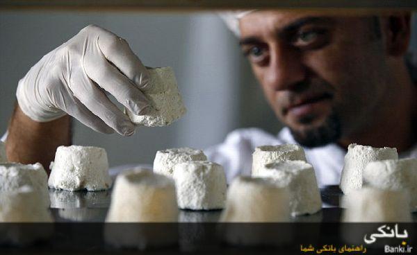 گرانترین پنیر جهان از شیر الاغ تولید میشود! +تصاویر